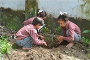 WaterSchool-Tree-Plantation-3