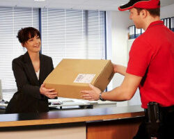 the-professional-couriers-ic-colony-borivali-west-mumbai-courier-services-5buh0y2339-250